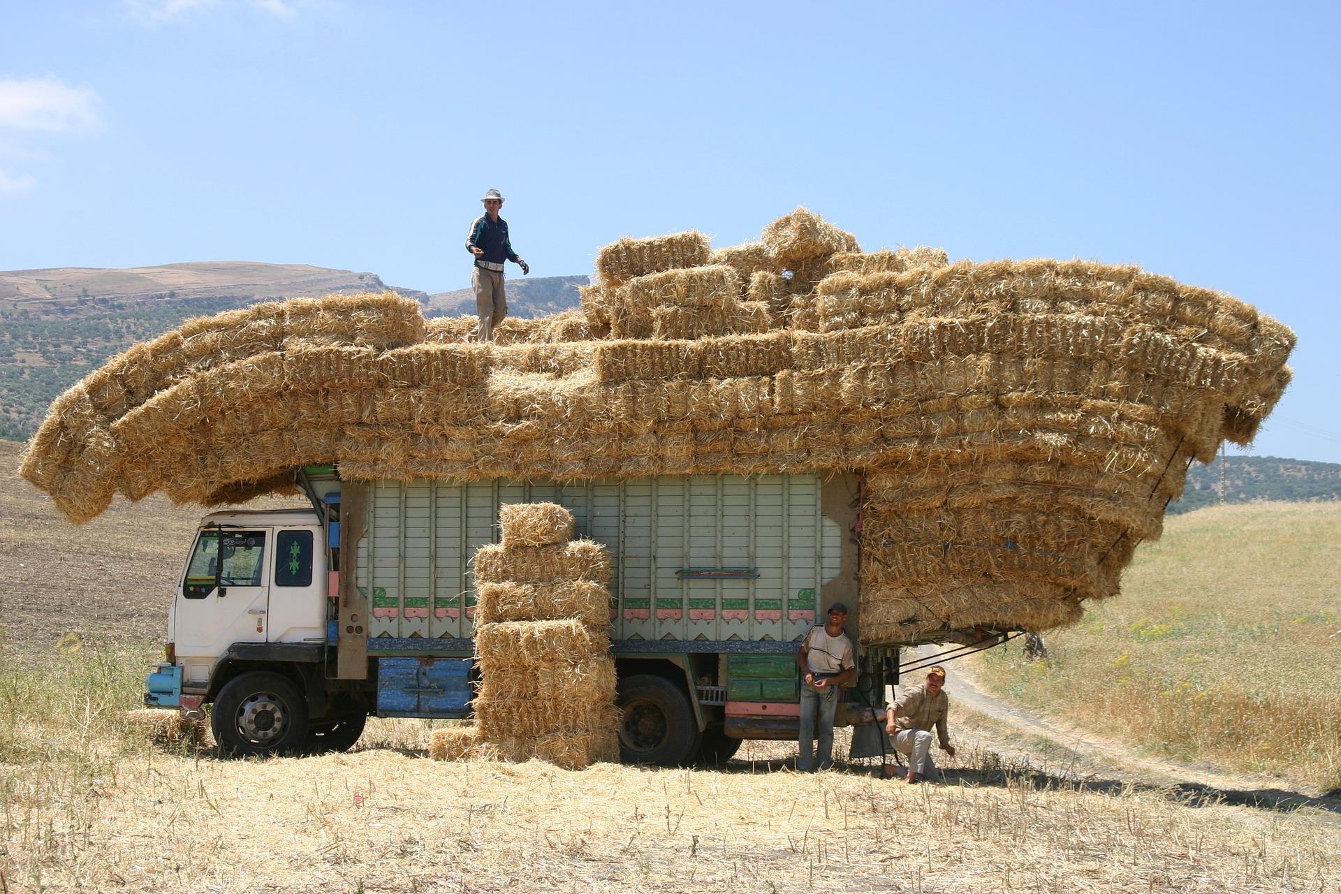 Logistyka transportu 3c